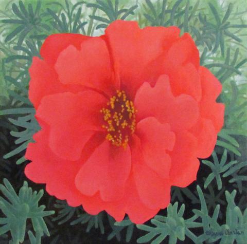 Marli's Red Flower